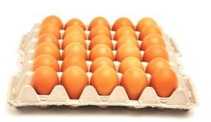 salud-y-fosforo-importancia-del-fosforo-alimentos-con-fosforo-